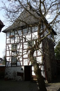 Klipsteinturm 2013